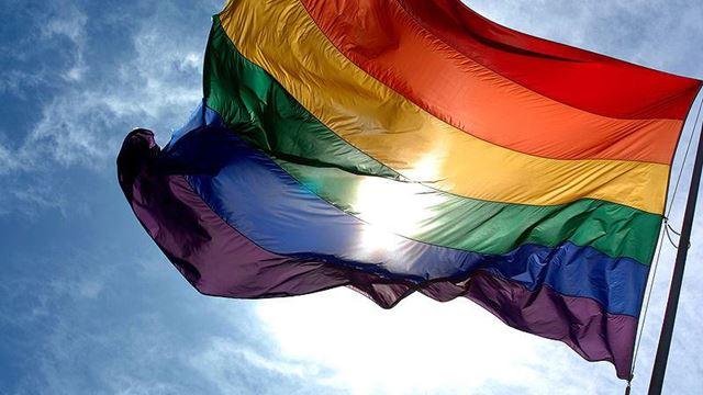 pride_flag___Gallery